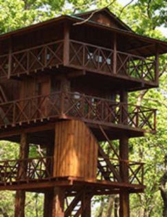 Jungle-Tower-768x1000